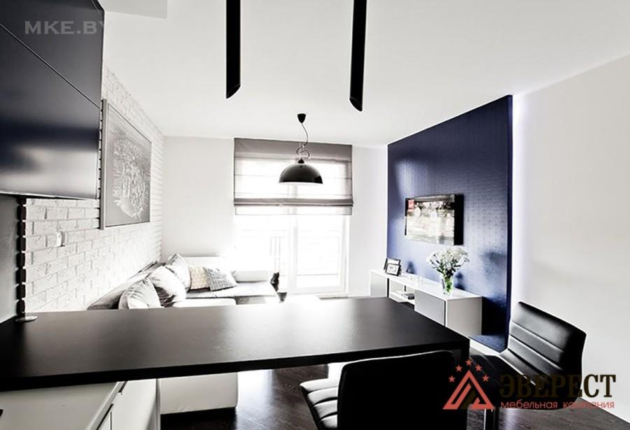 Еврокухня (кухни в квартиру студию) №6